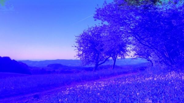 natureza 039