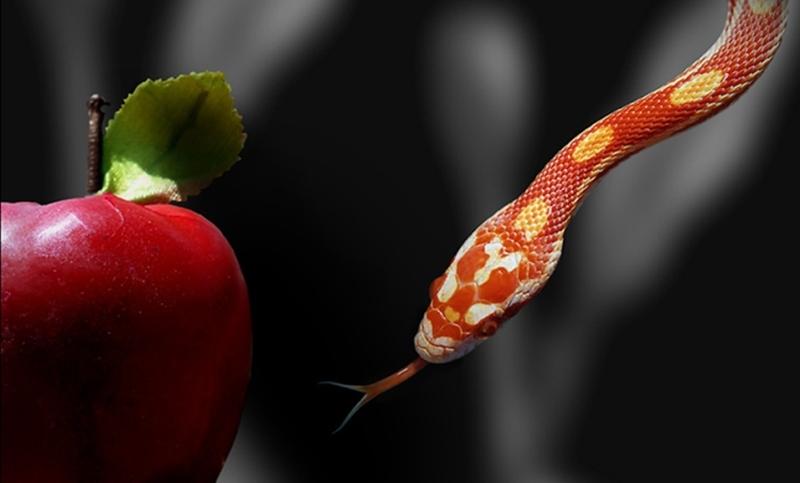 26-serpente_pecado