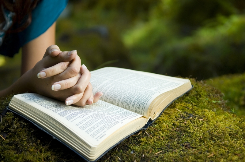 15-biblia