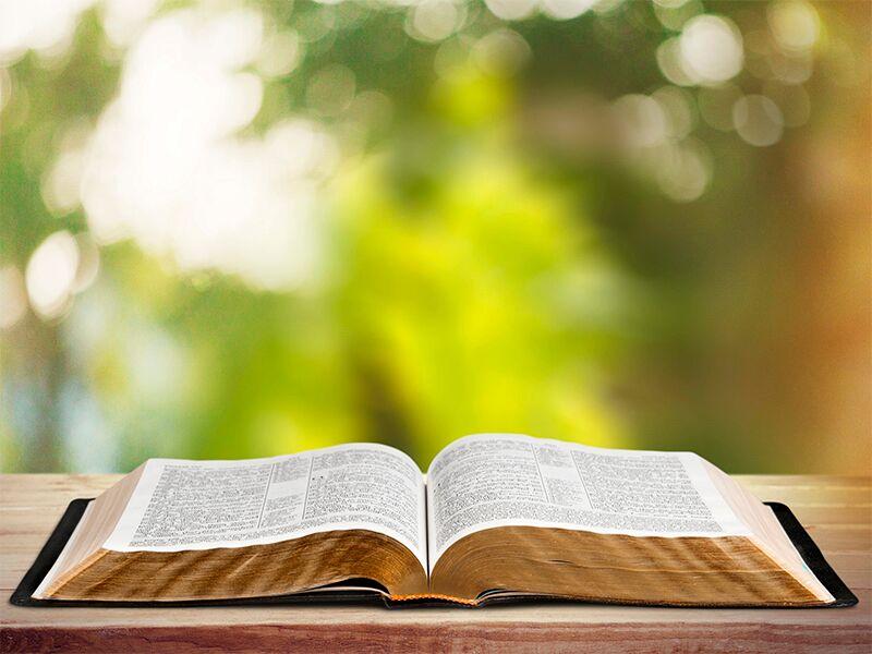 12-biblia