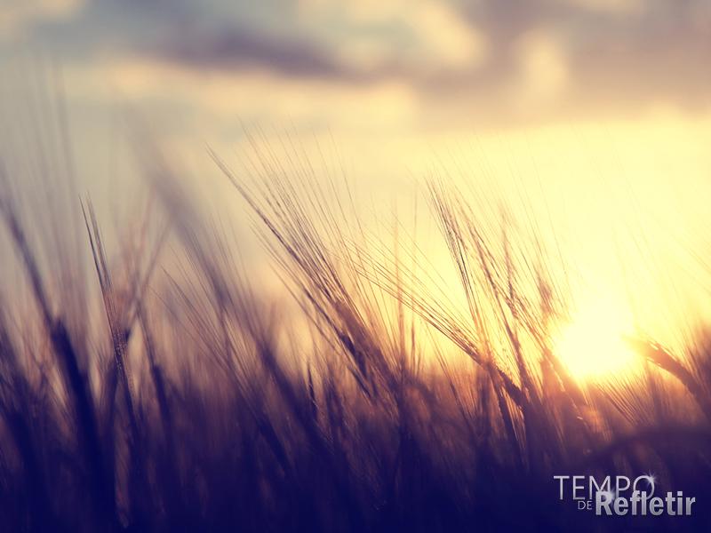 30-09-paisagem