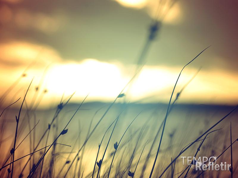 05-paisagem