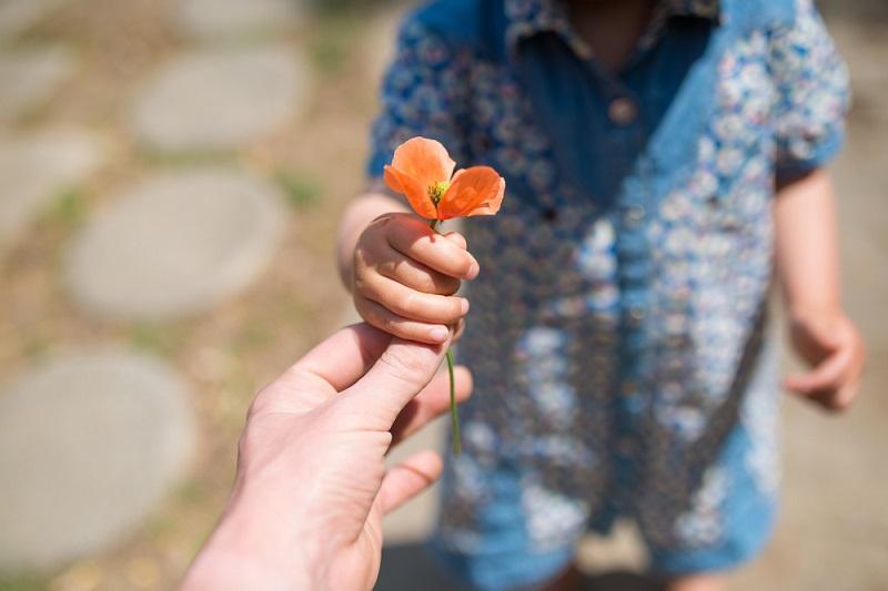 19-flor